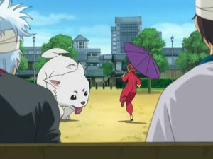 Rating: Safe Score: 2 Tags: animals animated artist_unknown character_acting creatures gintama gintama_(2006) User: YGP