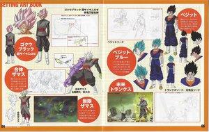 Rating: Safe Score: 2 Tags: character_design dragon_ball_series dragon_ball_super miyako_tsuji settei tadayoshi_yamamuro User: Ajay