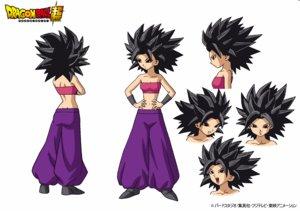 Rating: Safe Score: 5 Tags: character_design dragon_ball_series dragon_ball_super settei tadayoshi_yamamuro User: Ajay