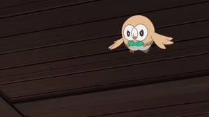 Rating: Safe Score: 10 Tags: animated creatures effects fighting pokemon pokemon_sun_&_moon smoke yong-ce_tu User: Ashita