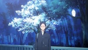 Rating: Safe Score: 18 Tags: animals animated character_acting creatures presumed seiichi_akitake tsurune User: Ashita